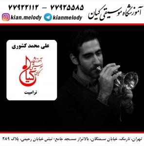 علی محمد کشوری